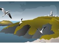 Strumble-Head-Gannet